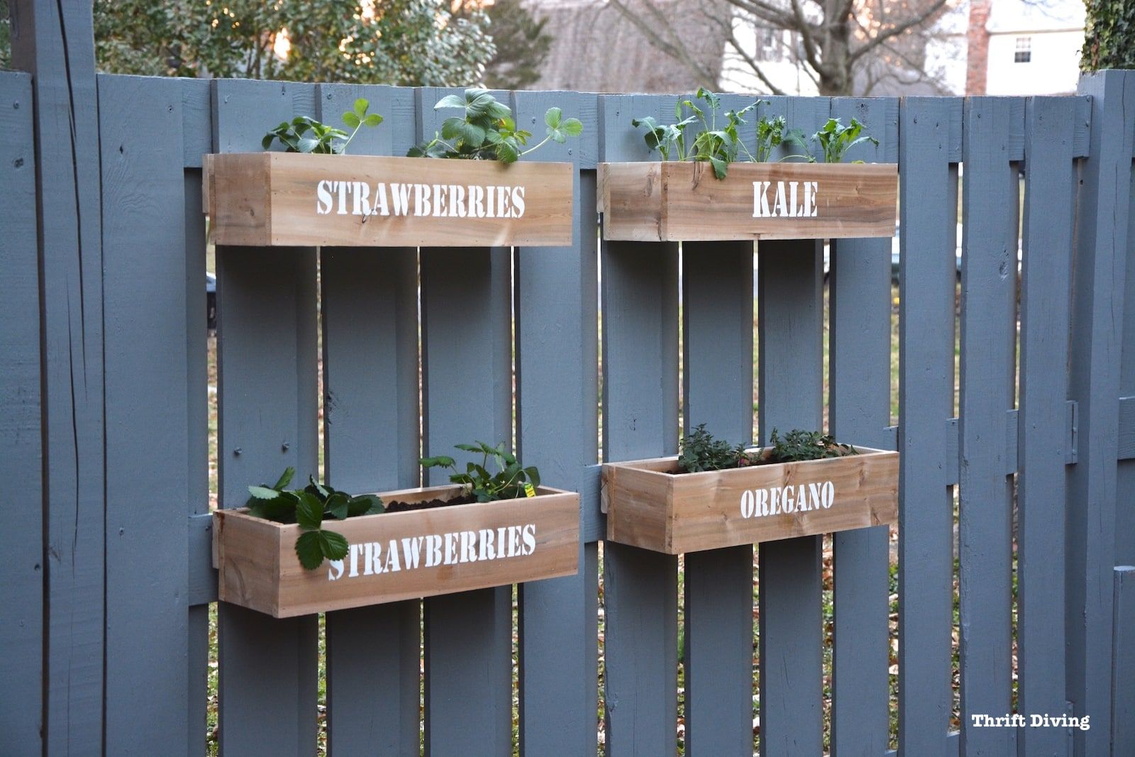 How To Make A Hanging Fence Garden Garden Projects