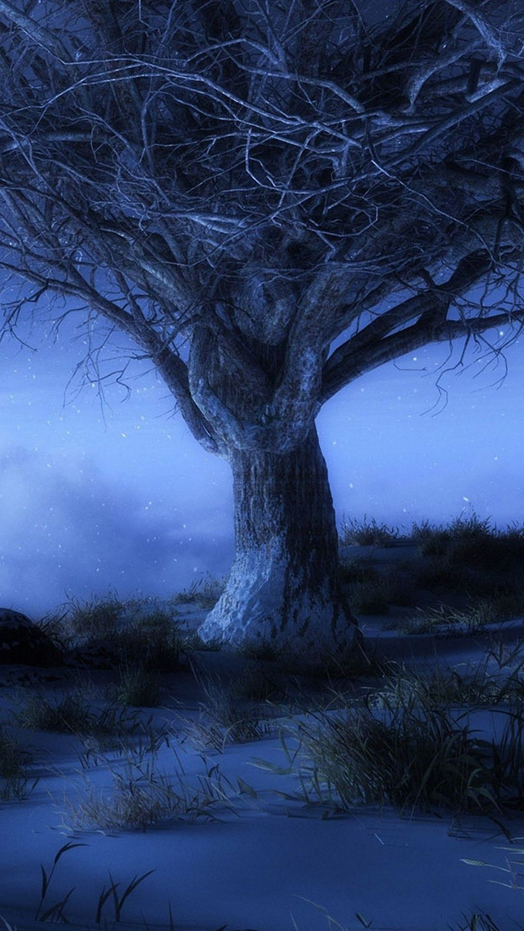 Hd Nature Night Old Tree Iphone 6 6s 6s Plus Wallpapers Nature Mobile Backgrounds Download Retina Wallpaper Samsung Galaxy Wallpaper Iphone 6 Wallpaper
