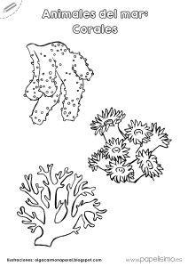 CoralesparacolorearAnimalesdelmar   Children  Nios