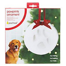 PAWPRINTS Holiday DIY Paw Print Ornament - A cute holiday craft for you and your dog!