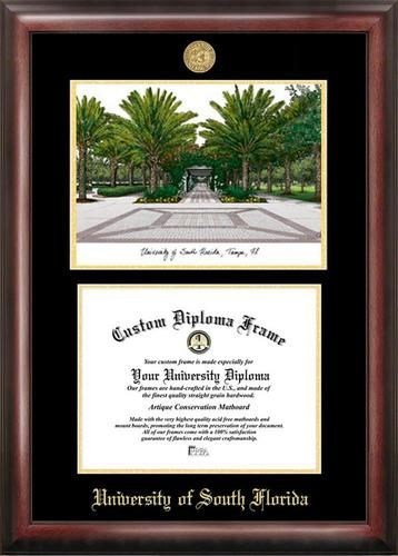 South Florida USF Bulls Diploma Frame with Limited Edition ...