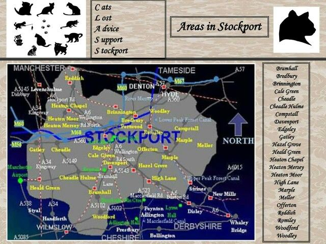 Map of the Areas in Stockport  C.L.A.S.S. Cats covers.