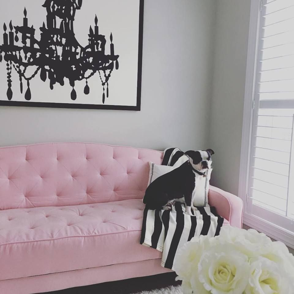 Home Shabby Chic Furniture Tufted Sofa Pink Sofa Bed