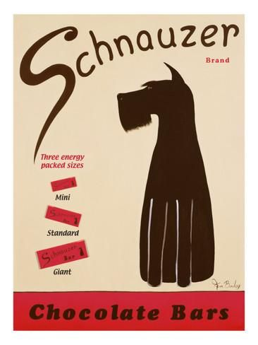 Schnauzer Bars Giclee Print by Ken Bailey at AllPosters.com