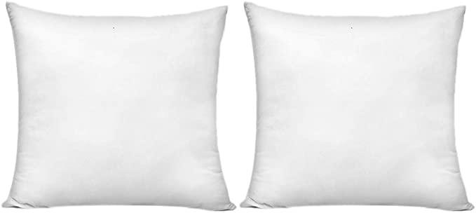 Pin On Pillow Insert 20x20