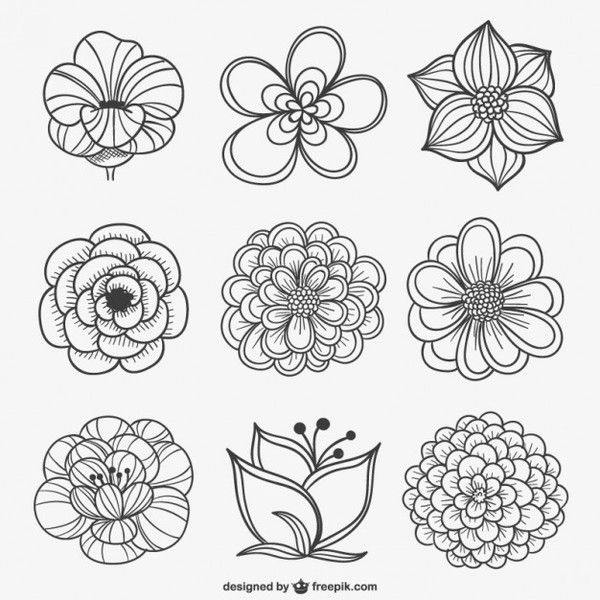 Vector Line Drawing Flower Pattern : Black and white flowers clipart vectors download free