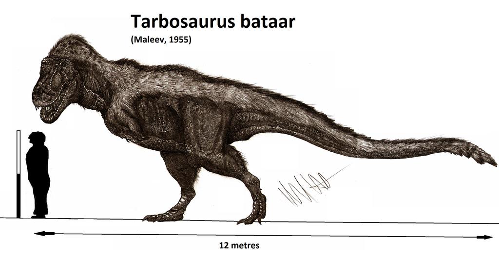 tarbosaurus bataar by teratophoneus dinosaurs