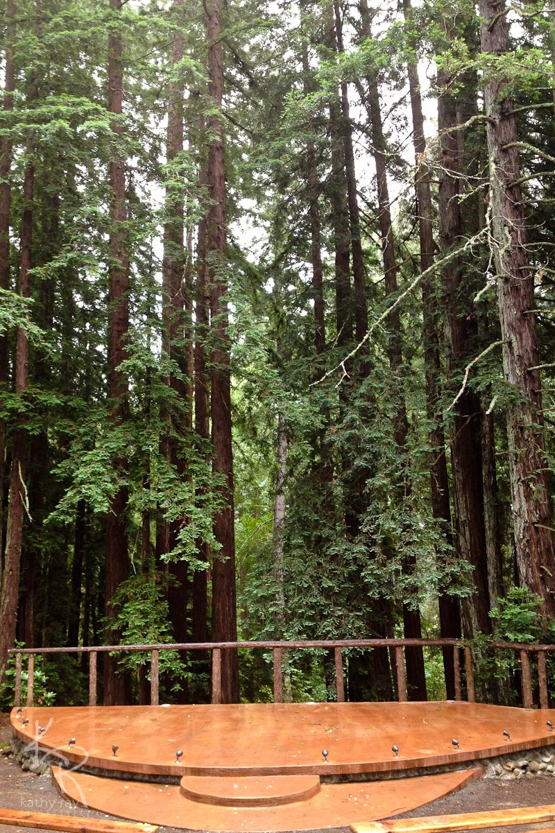 Redwood Forest Wedding Venue In Occidental Ca Owned By Barbara Gonnella And The Union Hotel