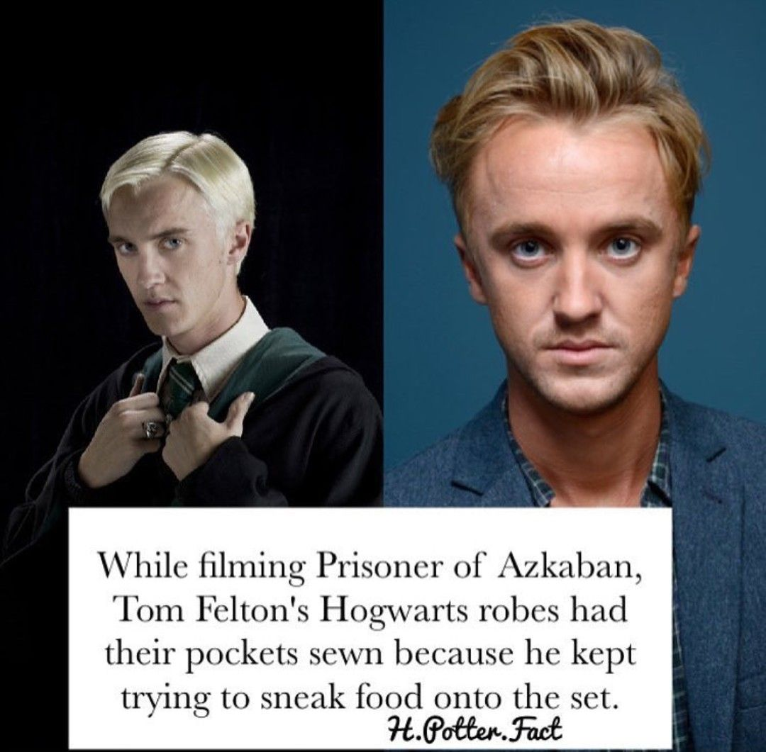 Pin By Betsy Balcerzak Dickerson On Harry Potter Harry Potter Draco Malfoy Harry Potter Jokes Harry Potter Facts