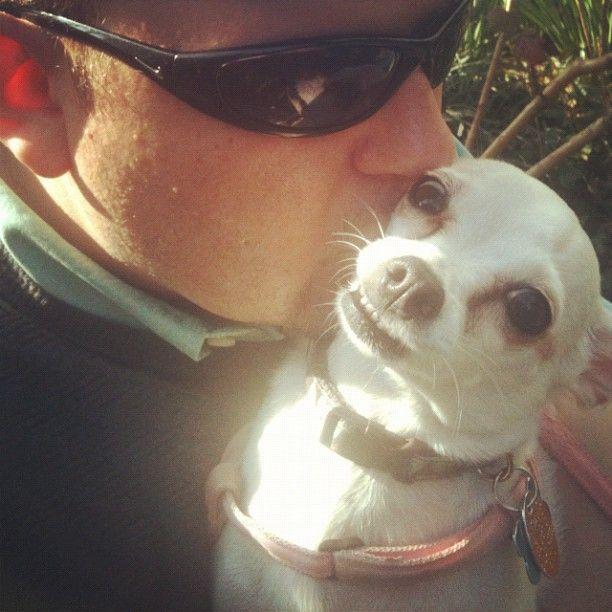 Loving my dog, dammit.