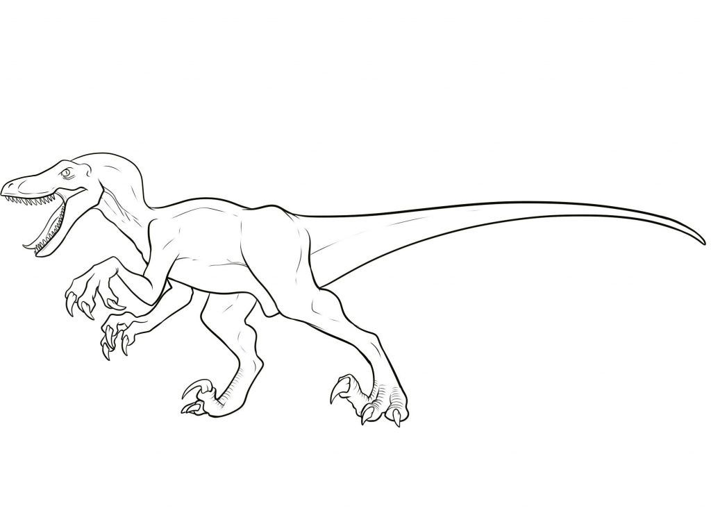 Velociraptor Coloring Pages | Pinterest