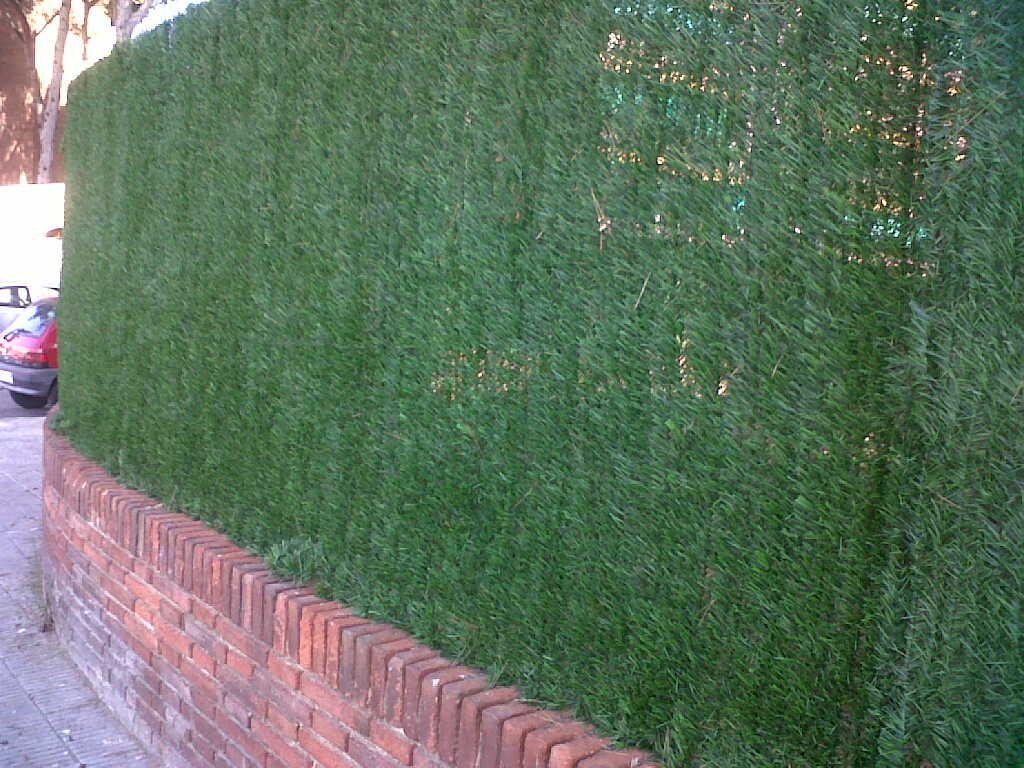 Valla de ocultaci n con seto artificial o sint tico ocultaci n 80 - Ocultacion para jardin ...