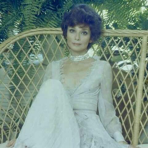 Audrey Hepburn   ☕️Audrey Hepburn♥   Pinterest   Audrey hepburn