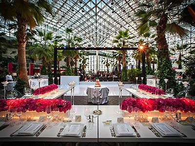Crystal Garden At The Navy Pier Chicago Wedding Venues Chicago Wedding Locations Downtown