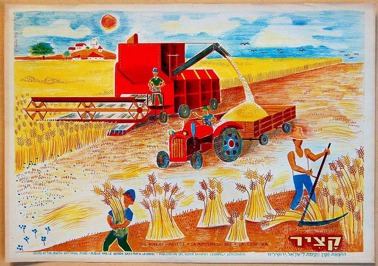 Httpwww Overlordsofchaos Comhtmlorigin Of The Word Jew Html: 1962 Israel Jewish Poster Kibbutz Wheat Harvest Judaica