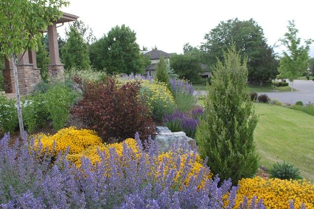 Flower Garden Ideas Colorado colorado zeriscape for front yard   colorado landscaping