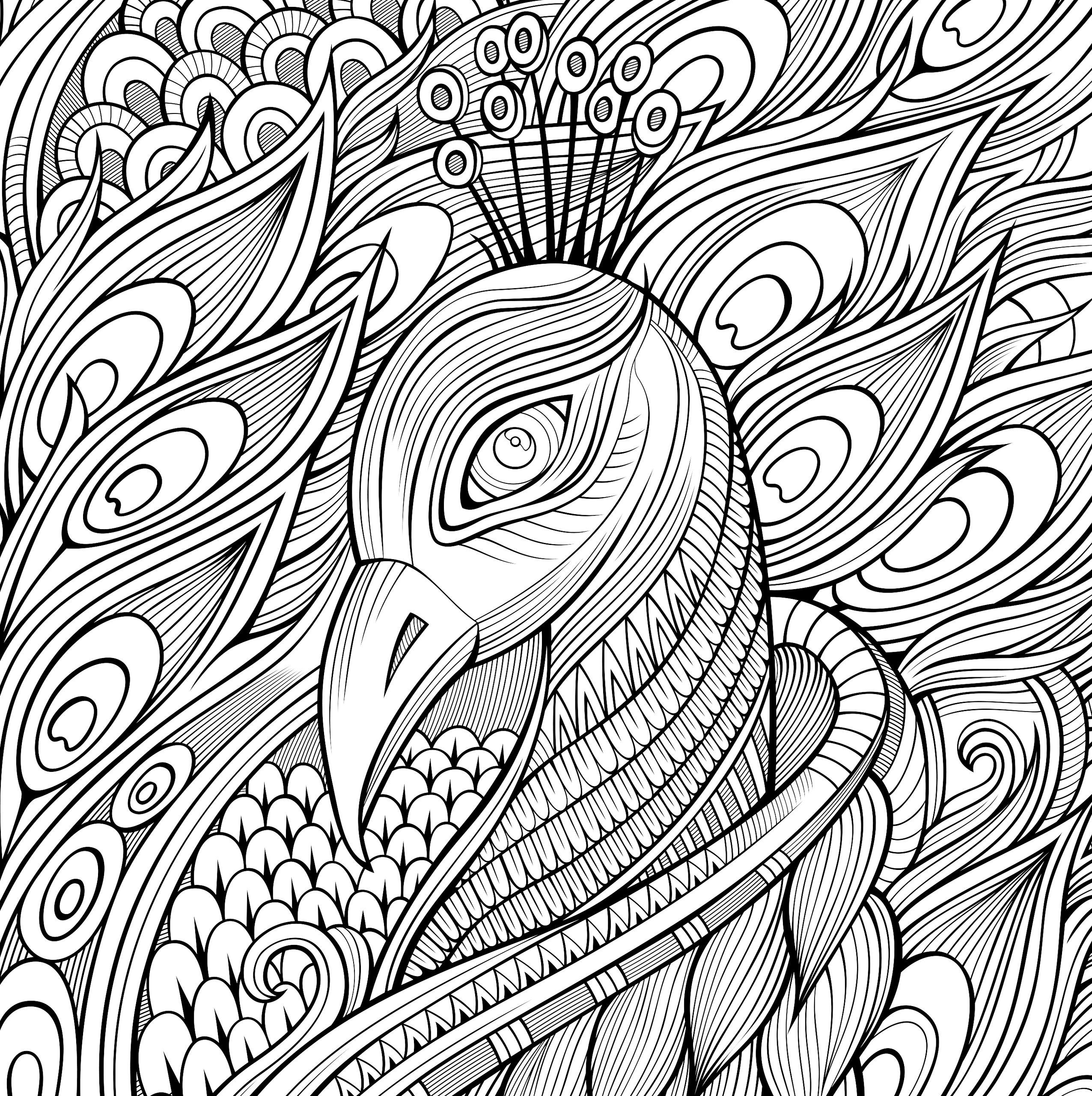 Wild Kingdom Adult Coloring Book (31 stress-relieving ...