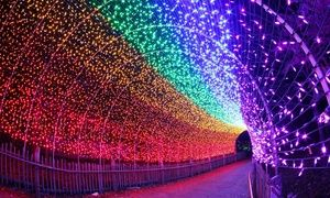Groupon   Tickets To PNC Festival Of Lights At Cincinnati Zoo And Botanical  Garden (Up To 21% Off) In Cincinnati Zoo U0026 Botanical Garden.