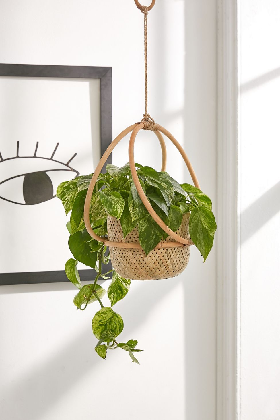 "Margot 7"" Hanging Planter Urban Outfitters in 2020"