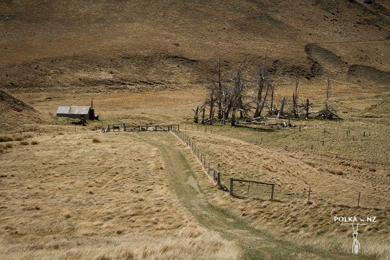 Meg Hut, Cardrona - Cromwell Track, Central Otago, South Island, New Zealand