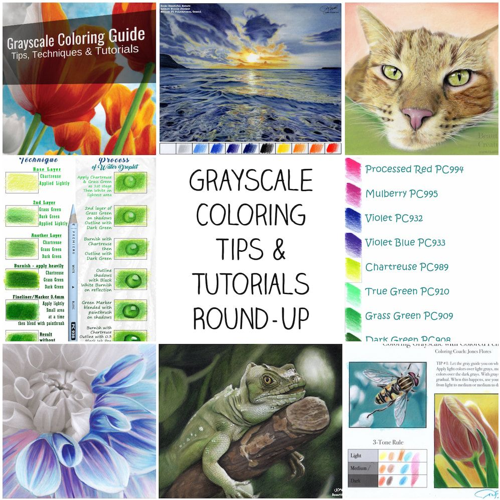 Picture Grayscale Coloring Greyscale Coloring Books Coloring Tips