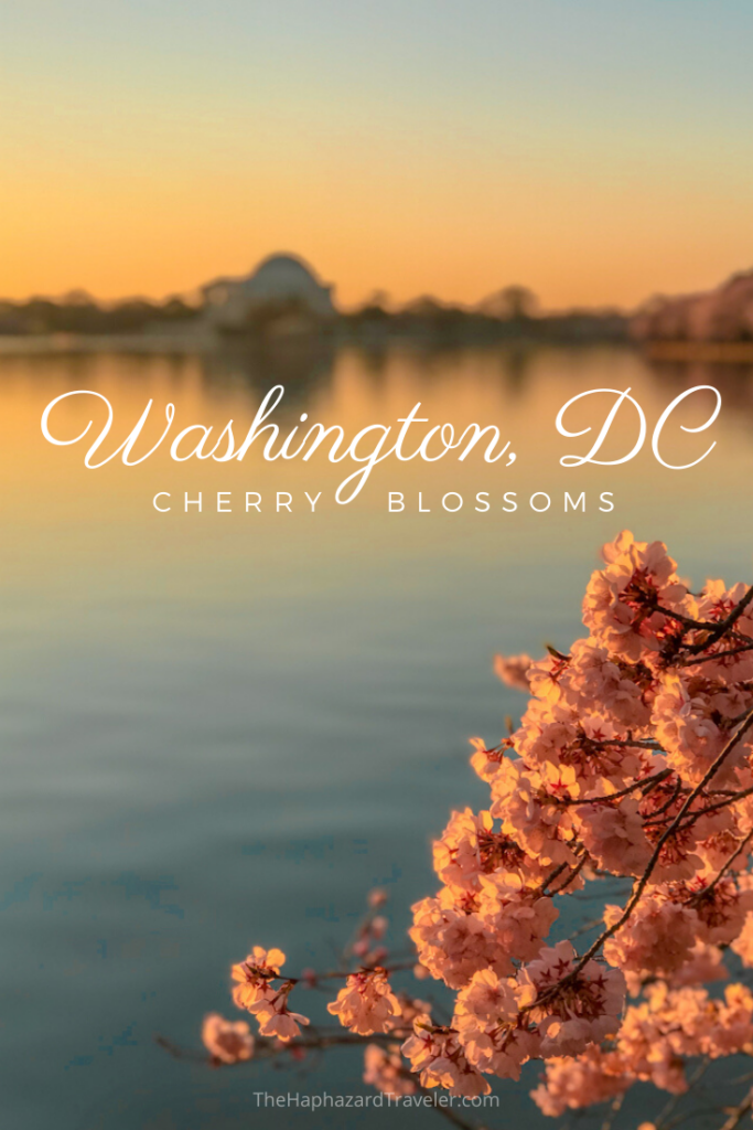 Where To See Cherry Blossoms In Dc Map Insider S Guide Travel Usa Washington Dc Travel American Travel