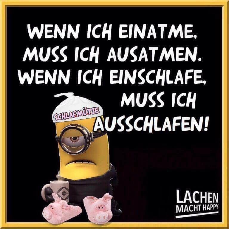 Pin Von Gessika0123456789 Auf Funny Lustige Sprüche