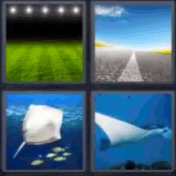Campo De Futbol 4fotos 1palabra Com 4 Fotos 1 Palabra 4 Letras
