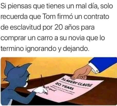 Theeozzy Tds Intrsdas Absurder Humor Jerry Tom W1 Y Memes Funny Spanish Memes Funny Memes