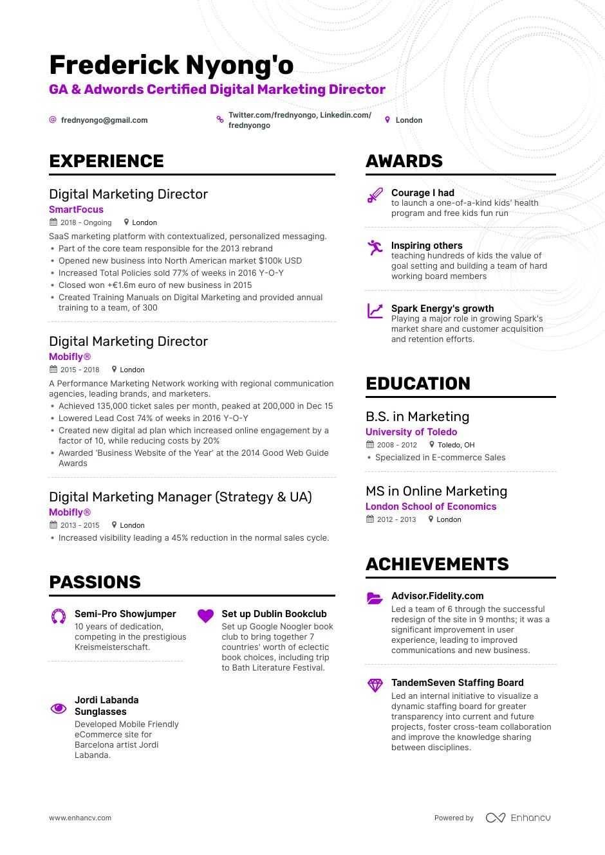 Digital Marketing Manager Resume Awesome Digital Marketing Resume Samples Album Sabadaphnecottage Marketing Director Marketing Resume Digital Marketing