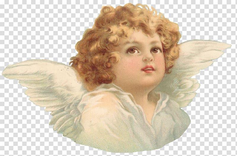 Cherub Angel Heaven God Angel Transparent Background Png Clipart Angel Cartoon Angel Illustration Cherub