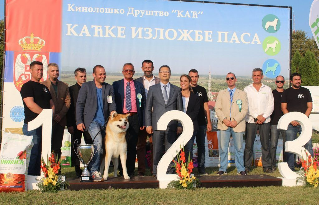 7th National Dog Show Cac Kac 3x Specialty Dog Shows 13