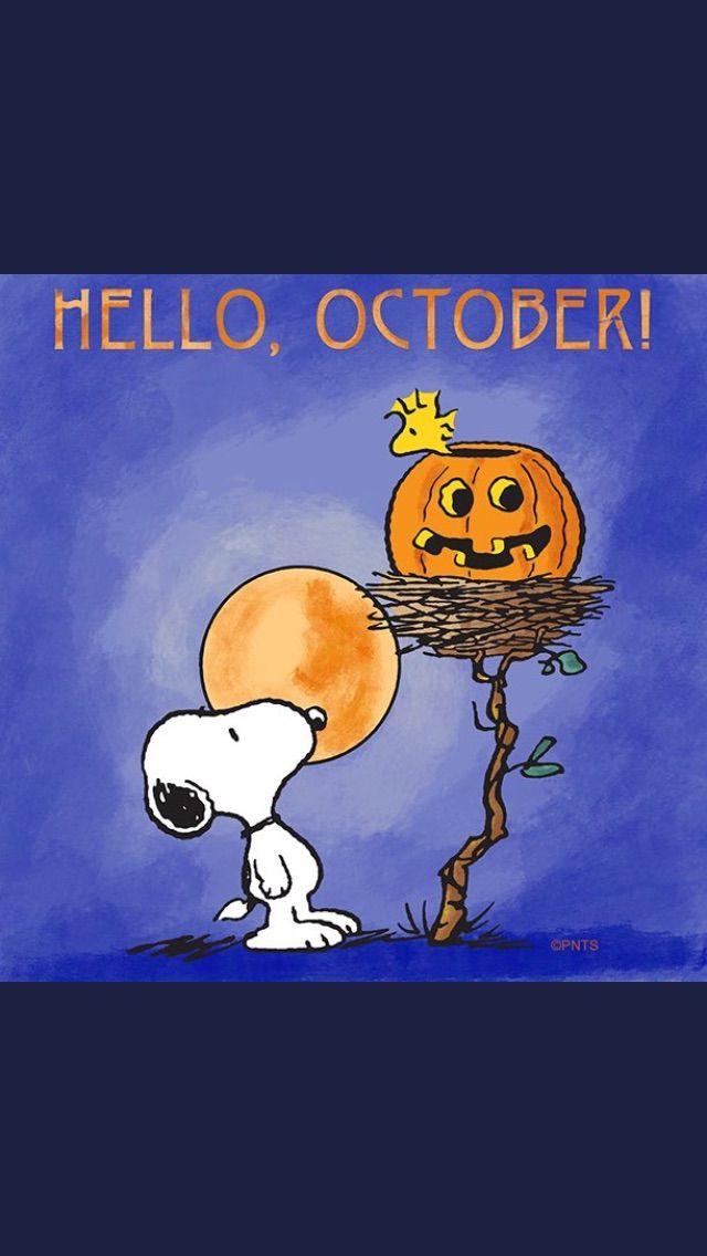 Hello, Oct