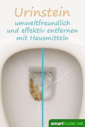Bist du mit allen bisherigen Maßnahmen zur Beseitigung von Urinstein gescheiter…
