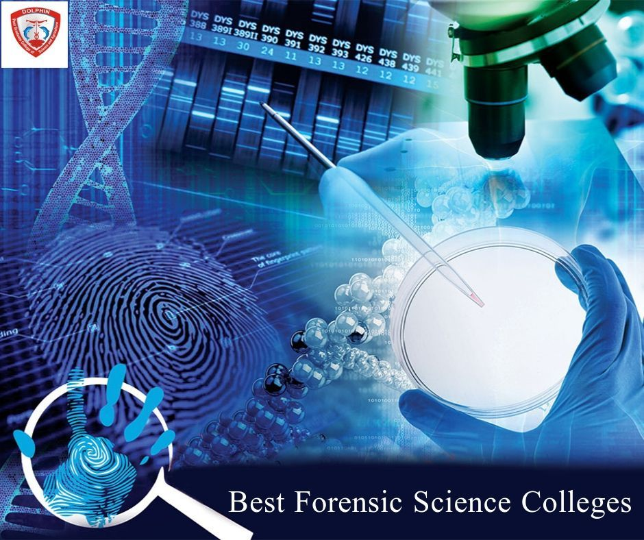 Best Forensic Science Colleges Forensic Science Forensic Jobs Forensics