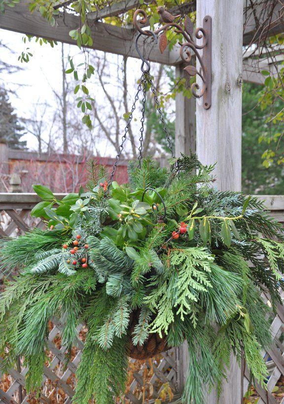 Diy Winter Hanging Basket Winter Hanging Baskets Winter Planter Christmas Hanging Baskets