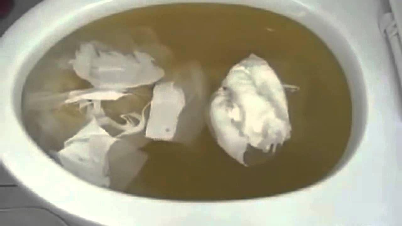 La technique pour d boucher les toilettes simplement et - Deboucher les toilettes ...