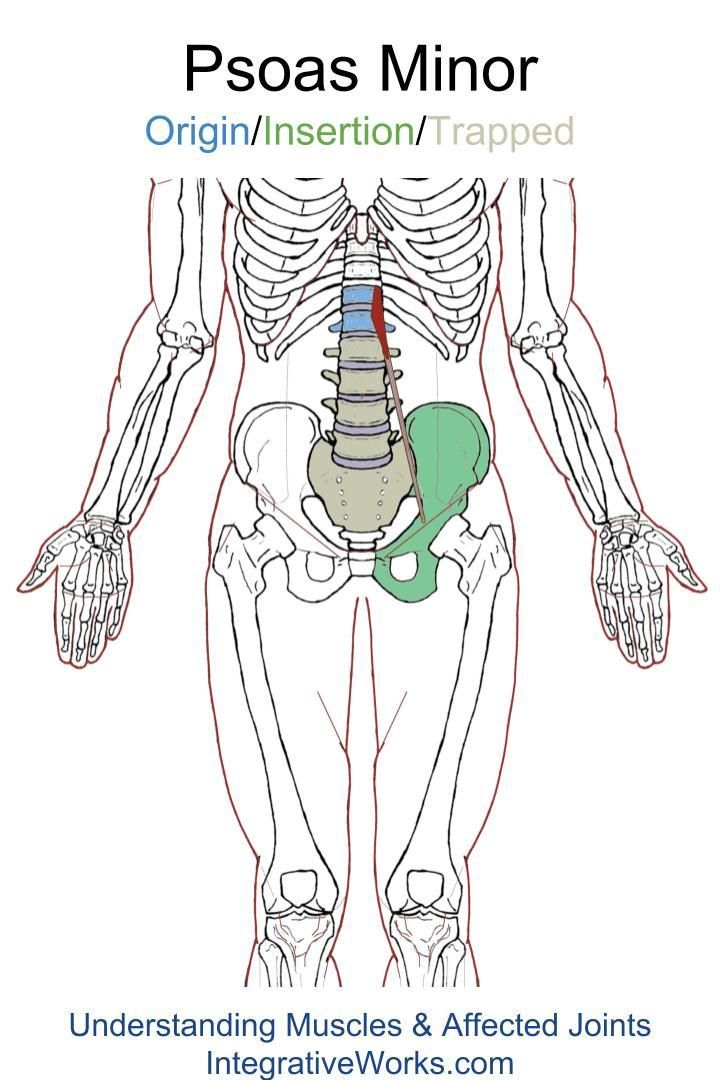 Trigger Points – Back is out but it hurts in the front