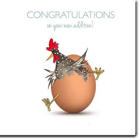 New Arrival Card |  This delightful New Addition card from The Skinny Card Co. is a lovely way to welcome a new arrival.