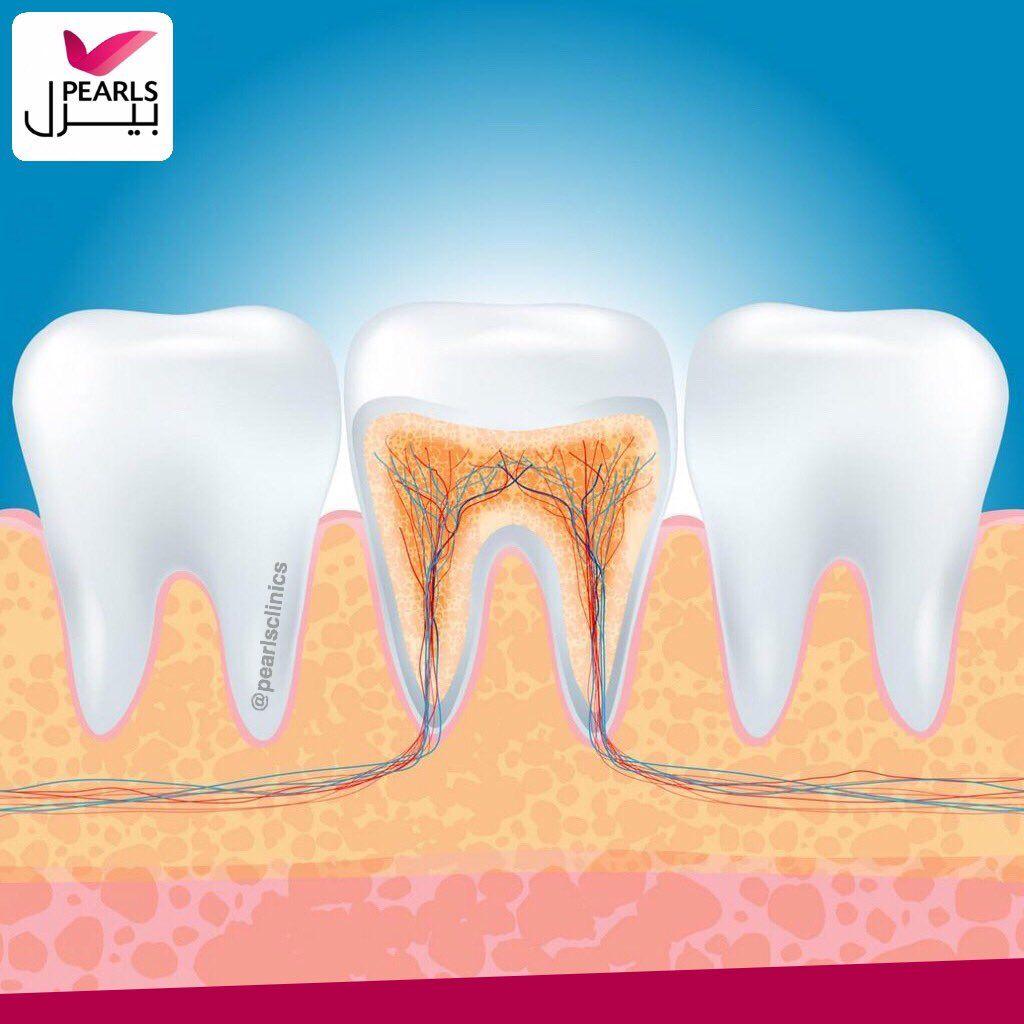 يعد علاج العصب وسيلة لاصلاح او انقاذ الاسنان المتسوسة جدا او للسيطرة على الآلام الناتجة عن التهاب او تلف ا Root Canal Root Canal Treatment Dentist Near Me
