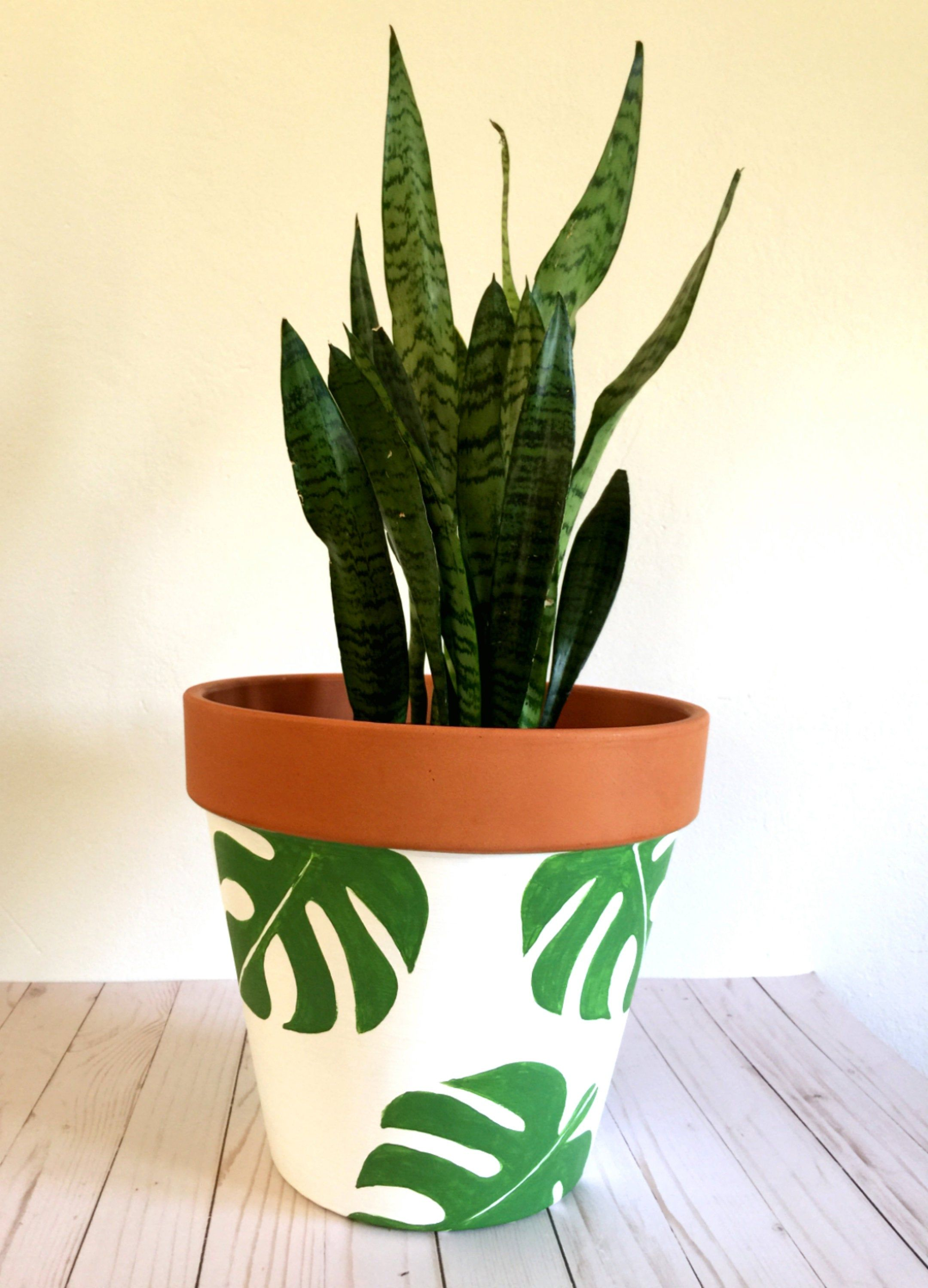Hand Painted 12 Inch Monstera Terracotta Clay Pot Hand Image 4 Painted Pots Diy Painted Plant Pots Painted Pots
