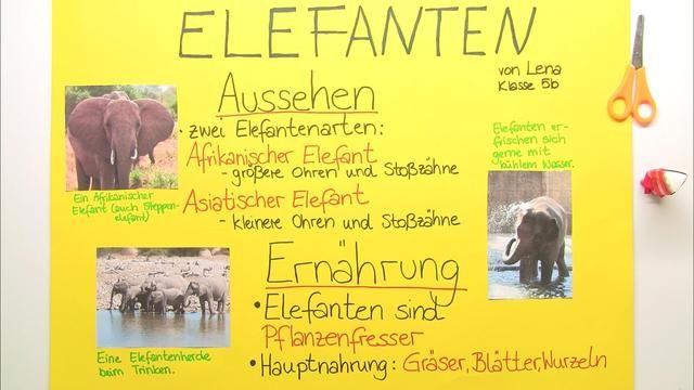 Bildergebnis Fur Prasentation Grundschule 2 Klasse Sachunterricht