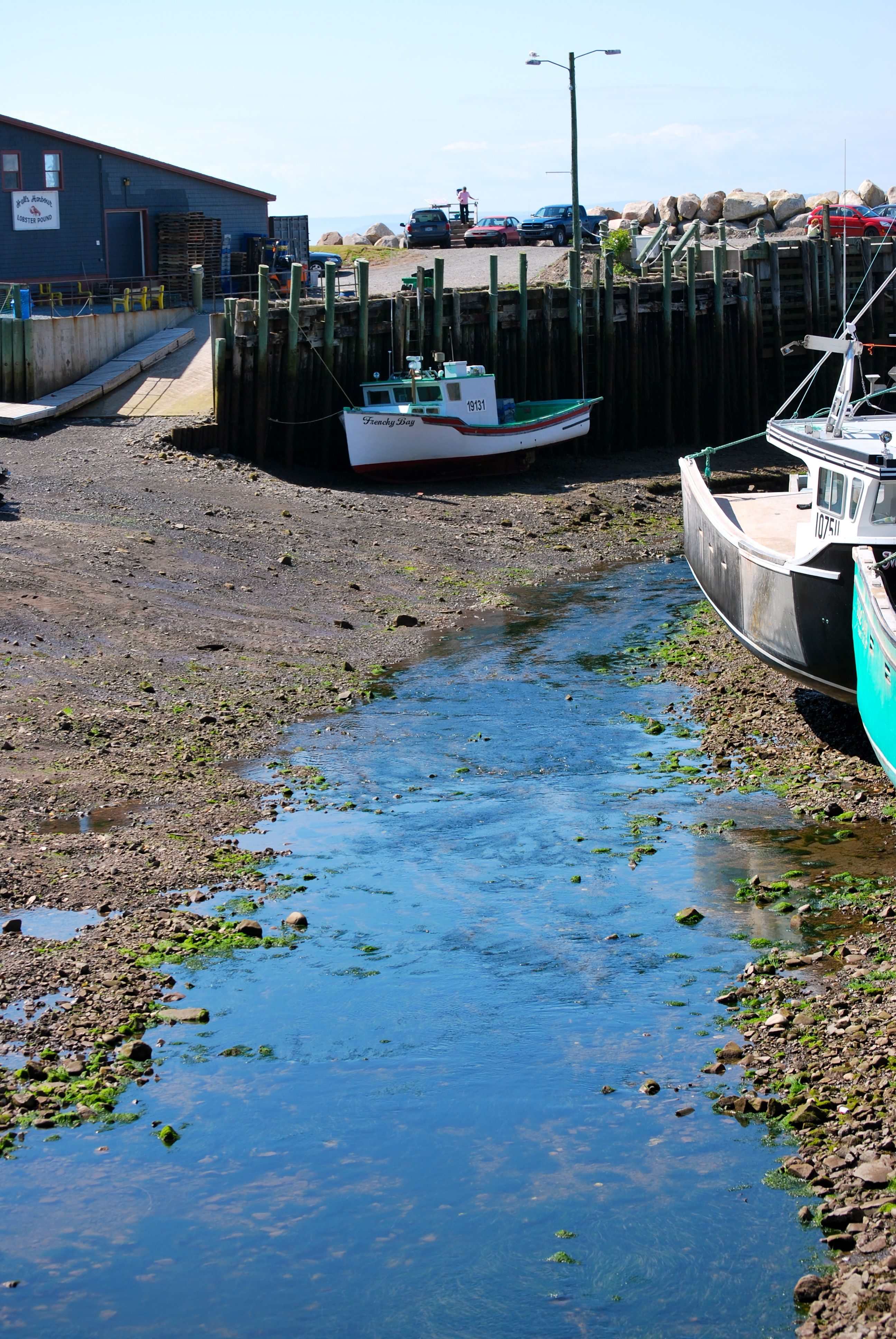 Low Tide Hall's Harbour