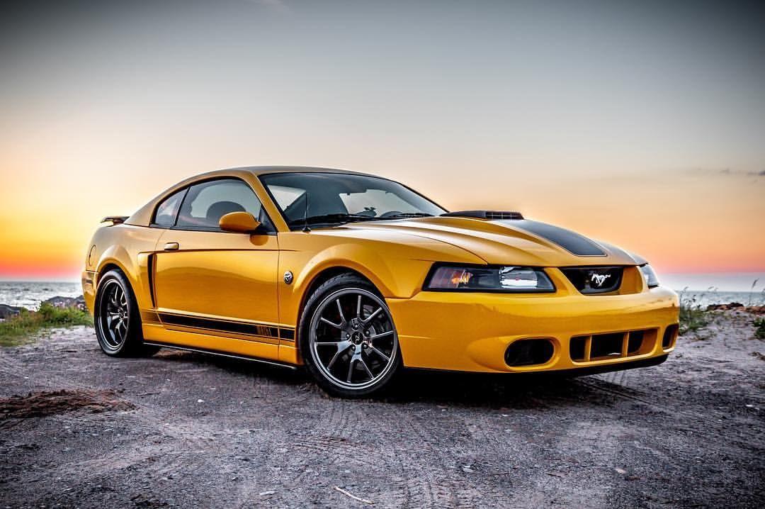 New Edge Mustang Hubba Hubba New Edge Mustang Sn95 Mustang