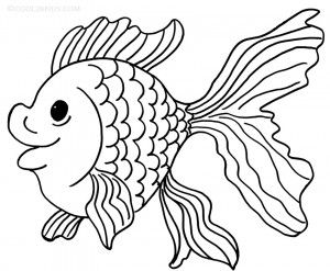 goldfish coloring pages to print fish coloring pages pinterest