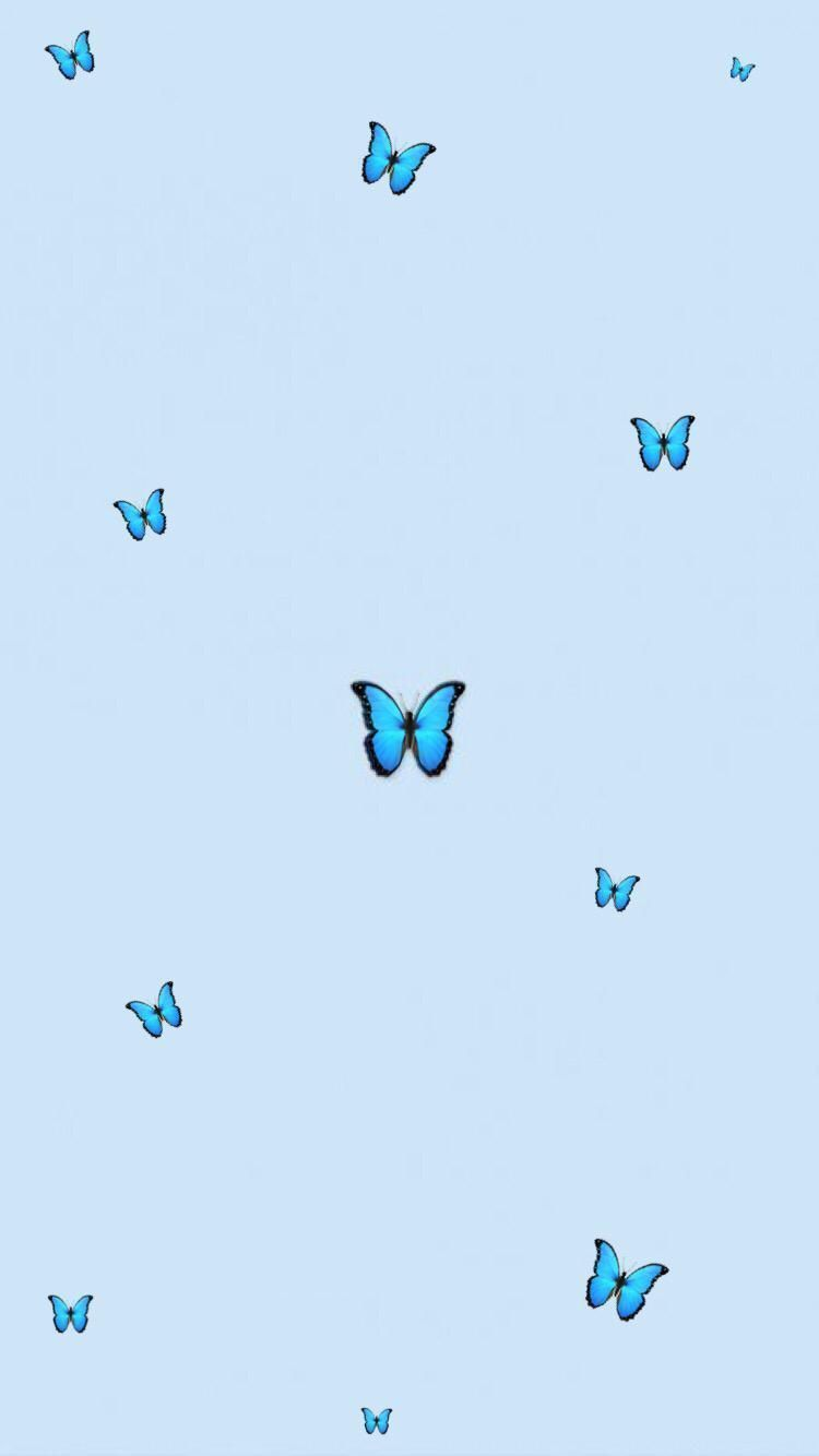 Aesthetic Butterfly Blueaesthetic Aesthetic Butterfly