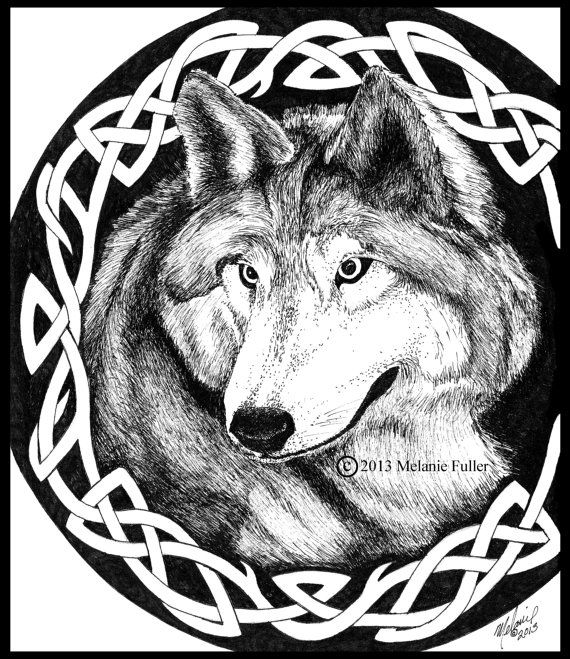 Celtic Wolf Pen and Ink Print 8.5x11
