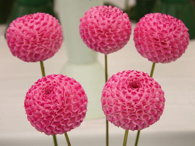 Wedding Buffet Decoration Pink Pom Pom Flowers