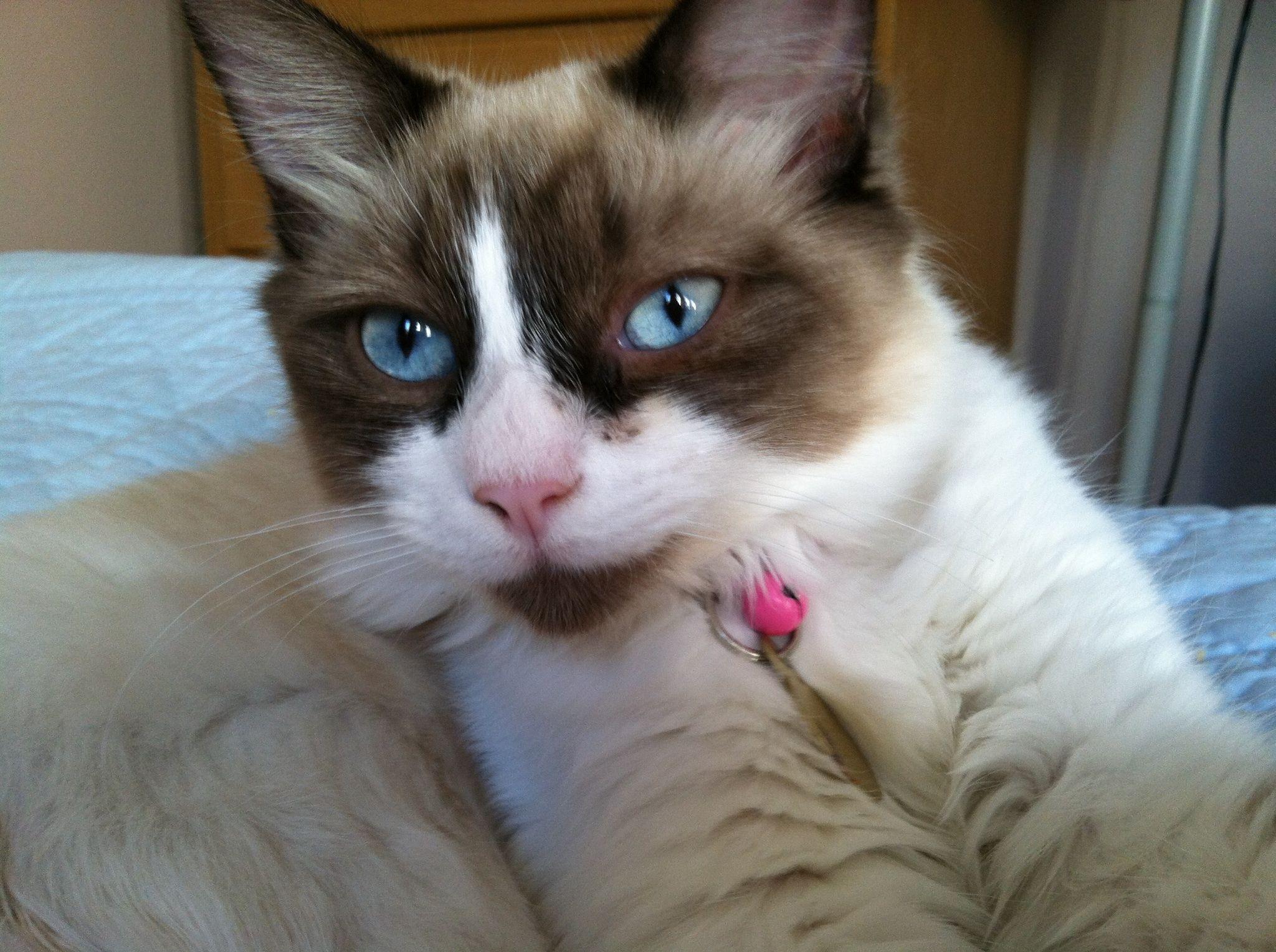 My baby, Jade.