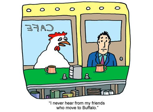 11 Reasons the Chicken Crossed the Road | Here, chicky-chicky